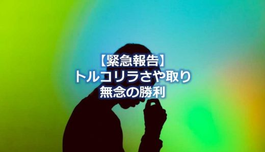 【報告】トルコリラ円サヤ取り手じまいの理由~無念の勝利~