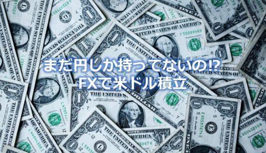 円だけで大丈夫?今すぐ米ドルのFX積立投資をおすすめする理由